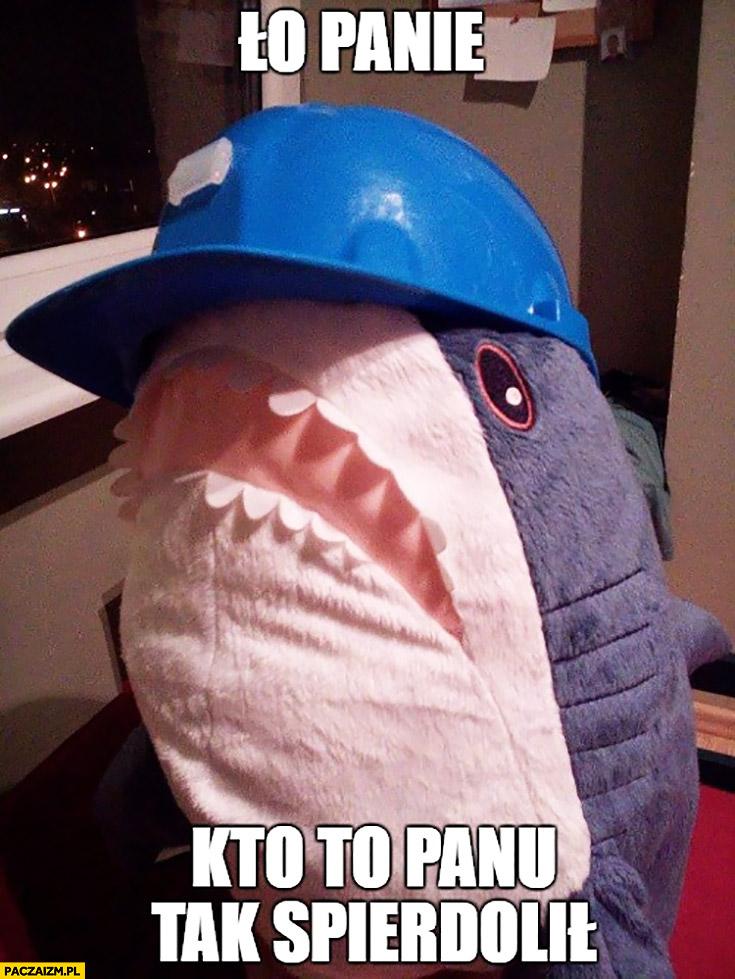 Ło Panie kto tak panu spierdolił rekin z Ikei