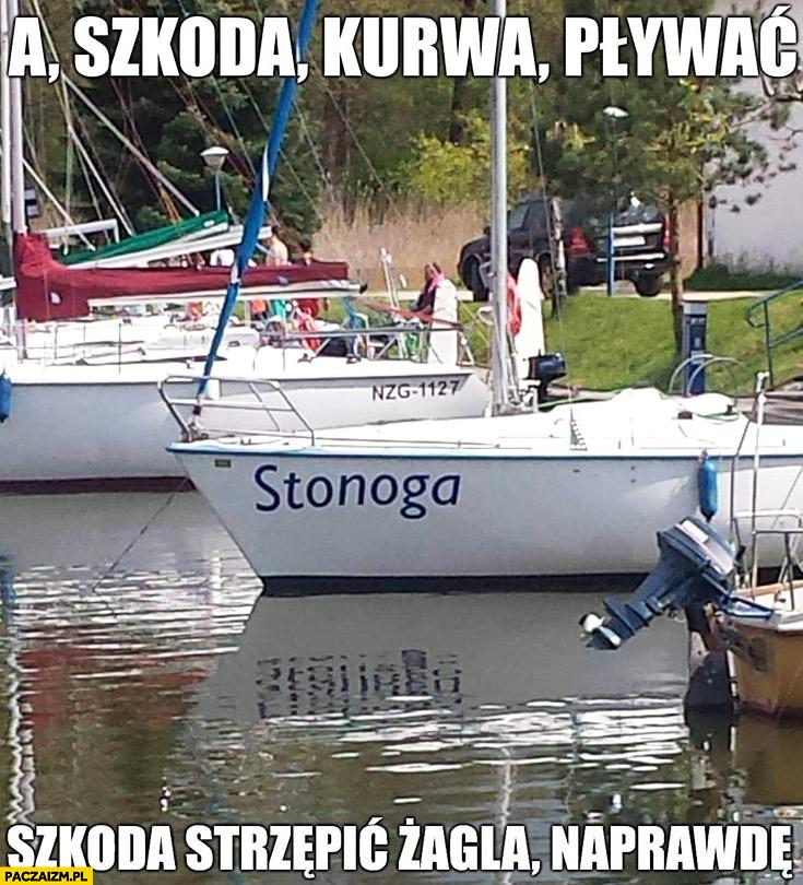 Łódka Stonoga a szkoda kurna pływać, szkoda strzępić żagla naprawdę