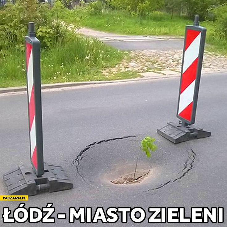 Łódź miasto zieleni dziura w jezdni drodze drzewko