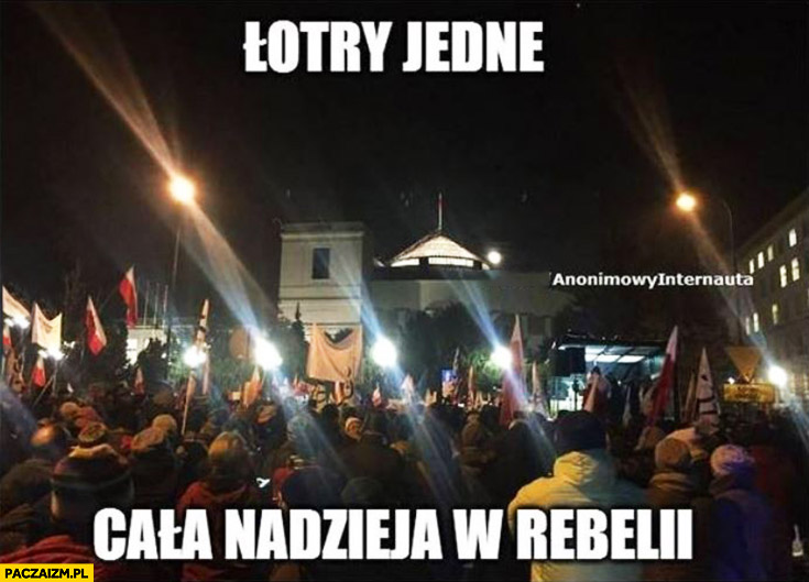 Łotry jedne, cała nadzieja w rebelii protest pod sejmem