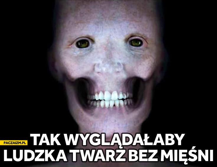 Ludzka twarz bez mięśni