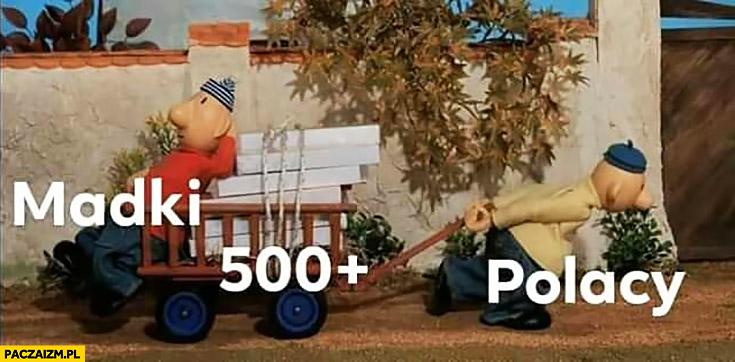 Madki na 500 plus Polacy ciągną wózek bajka sąsiedzi