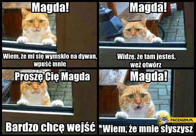 Magda wpuść kota