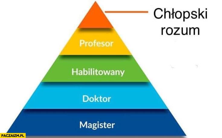 Magister, doktor, habilitowany, profesor na szczycie piramidy chłopski rozum
