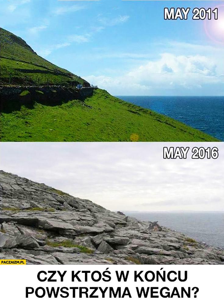 Maj 2011 zielona trawa, maj 2016 skały. Czy ktoś w końcu powstrzyma wegan?