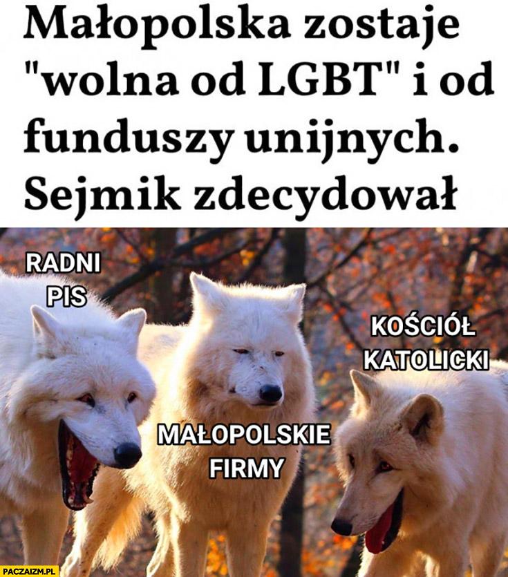 Małopolska zostaje wolna od LGBT i od funduszy unijnych sejmik zdecydował radni kościół wilki śmieją się, małopolskie firmy smutne