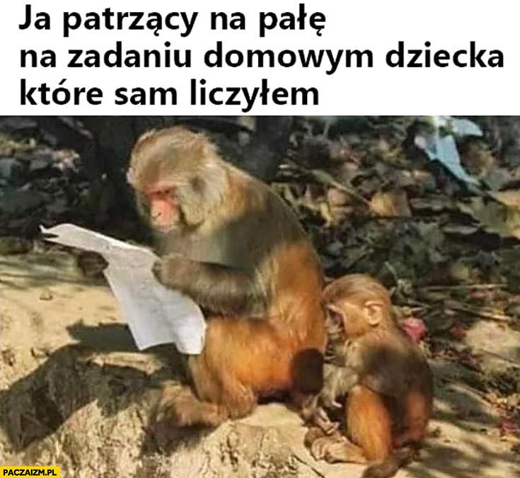 Małpa ja patrzący na pałę na zadaniu domowym dziecka które sam liczyłem