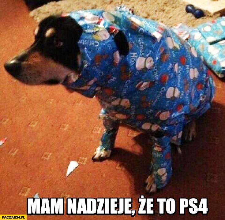 Mam nadzieję, że to PS4 pies