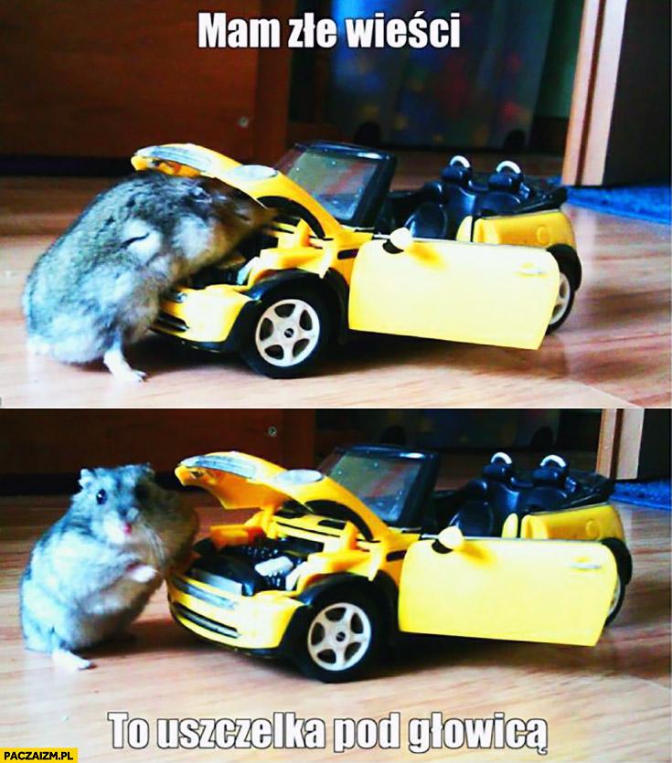 Mam złe wieści, to uszczelka pod głowicą chomik naprawia auto samochód Mini Cooper