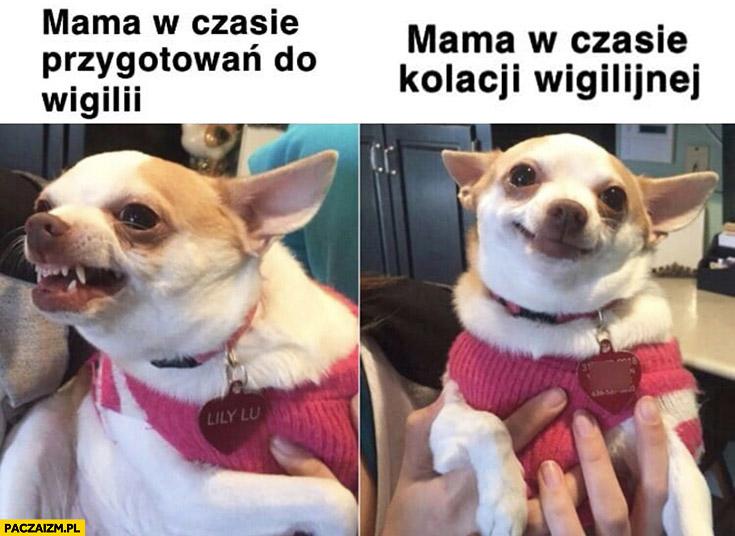 Mama w czasie przygotowań do wigilii vs mama w czasie kolacji wigilijnej pies piesek