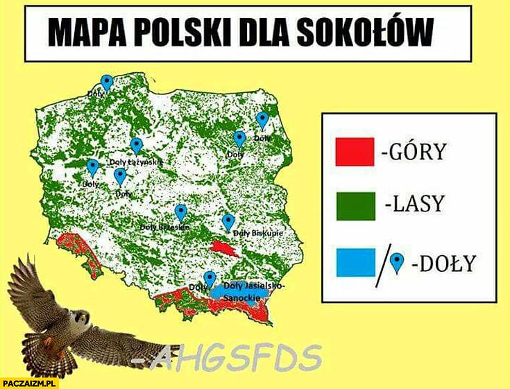 Mapa Polski dla sokołów góry, lasy, doły ahgsfds