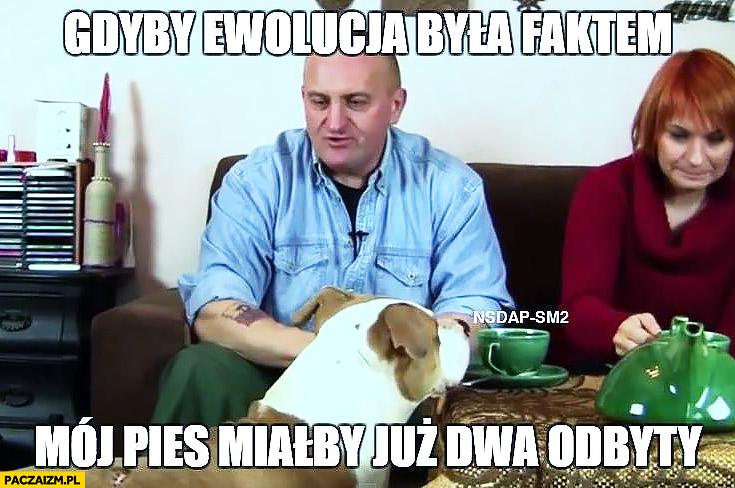Marian Kowalski gdyby ewolucja była faktem mój pies miałby już dwa odbyty