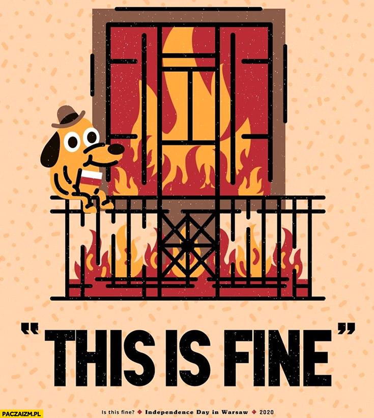 Marsz niepodległości w Polsce this is fine pożar mieszkania