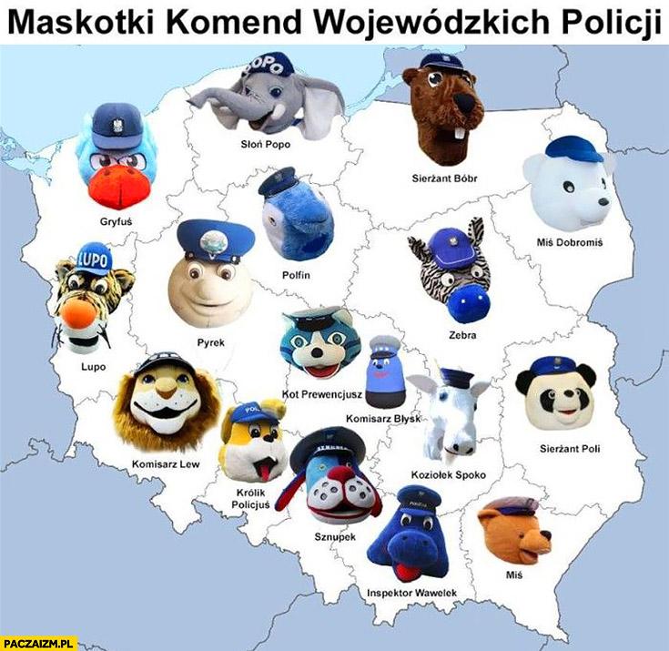 Maskotki komend wojewódzkich Policji w Polsce mapa mapka infografika