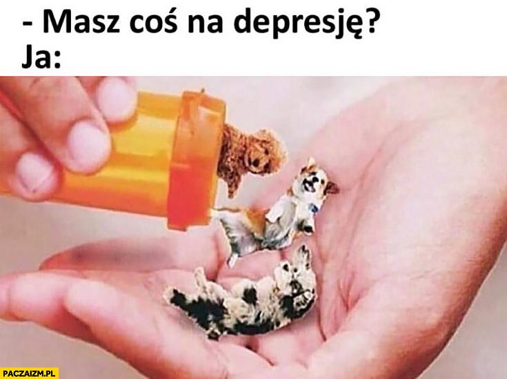 Masz coś na depresję? Ja: tabletki leki psy pieski