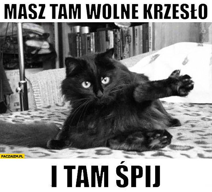 Masz tam wolne krzesło i tam śpij kot na łóżku pokazuje łapą ręką