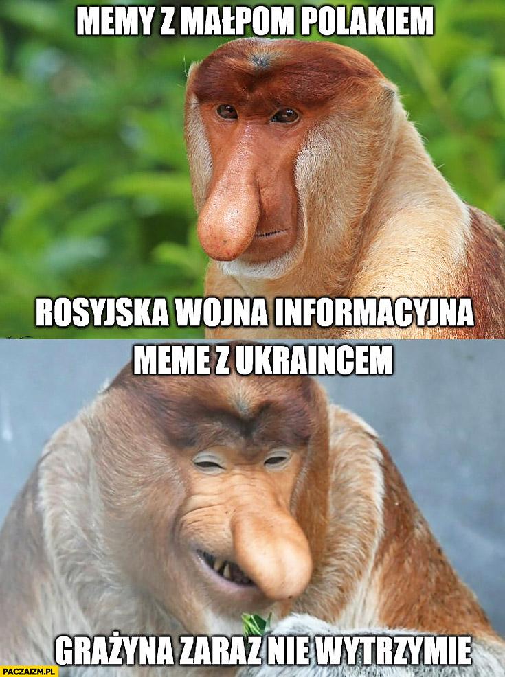 Memy z małpą Polakiem Rosyjska wojna informacyjna, memy z Ukraińcem Grażyna zaraz nie wytrzymam typowy Polak nosacz małpa