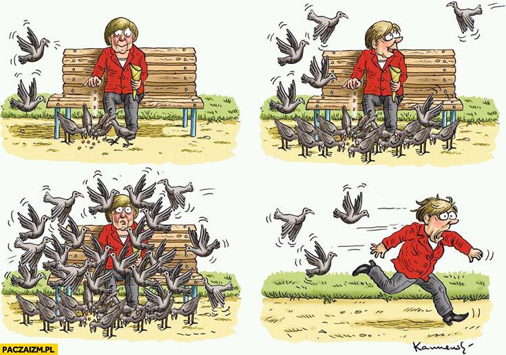 Merkel karmi gołębie za dużo ucieka