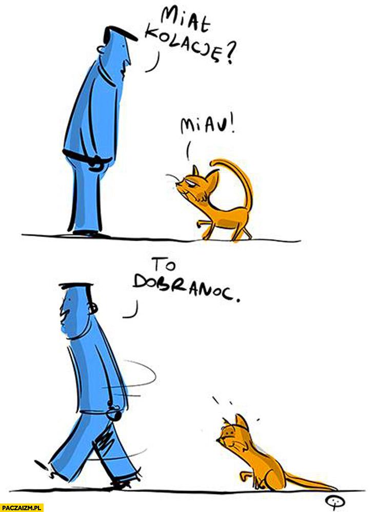 Miał kolację? Miau. To dobranoc. kot kotek