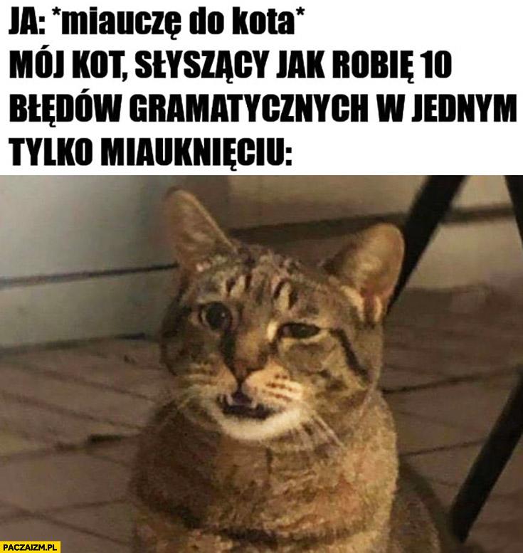 Miauczę do kota, mój kot słyszący jak robię 10 błędów gramatycznych w jednym miauknięciu zdziwiony