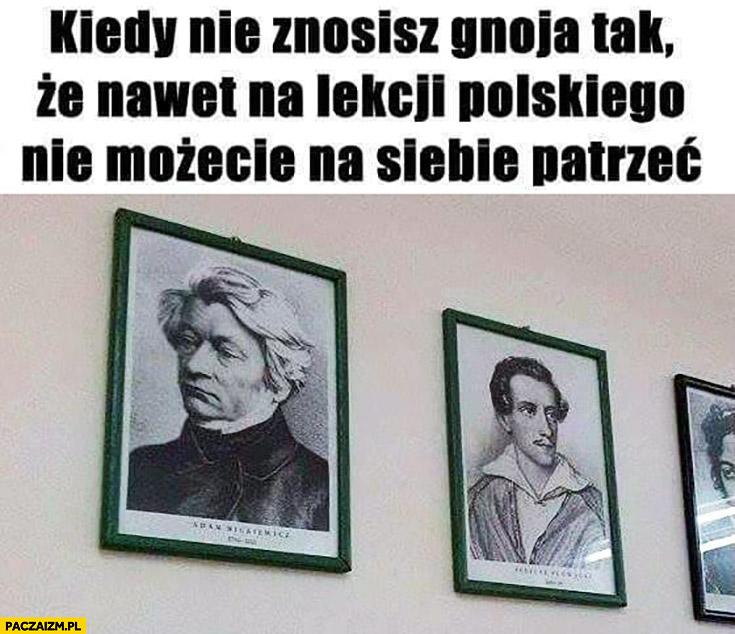 Mickiewicz Słowacki kiedy nie znosisz gnoja tak, że nawet na lekcji polskiego nie możecie na siebie patrzeć