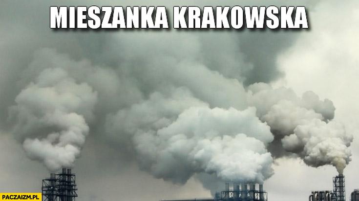 Mieszanka krakowska dym z kominów smog zanieczyszczenie powietrza