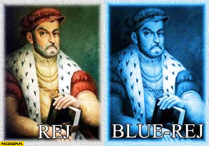 Mikołaj Rej Blue Rej