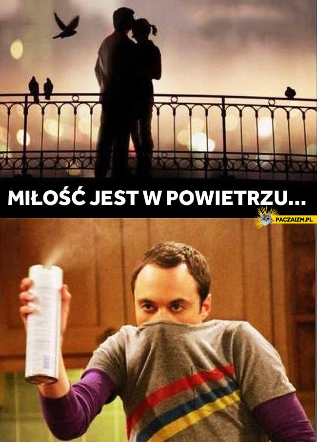 Miłość jest w powietrzu Sheldon