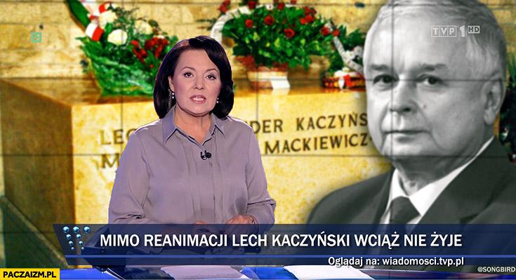 Mimo reanimacji Lech Kaczyński wciąż nie żyje Wiadomości TVP ekshumacja
