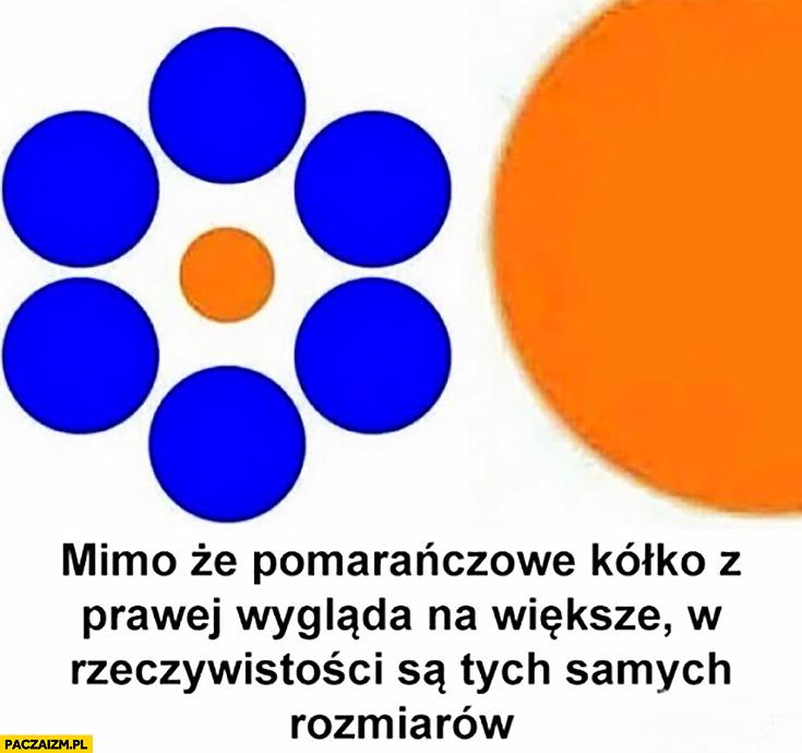 Mimo, że pomarańczowe kółko z prawej wygląda na większe w rzeczywistości są tych samych rozmiarów złudzenie optyczne