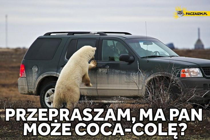 Miś Coca-Cola