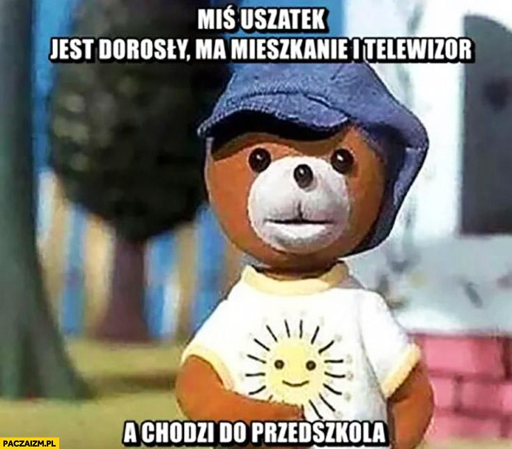 Miś Uszatek jest dorosły, ma mieszkanie i telewizor a chodzi do przedszkola