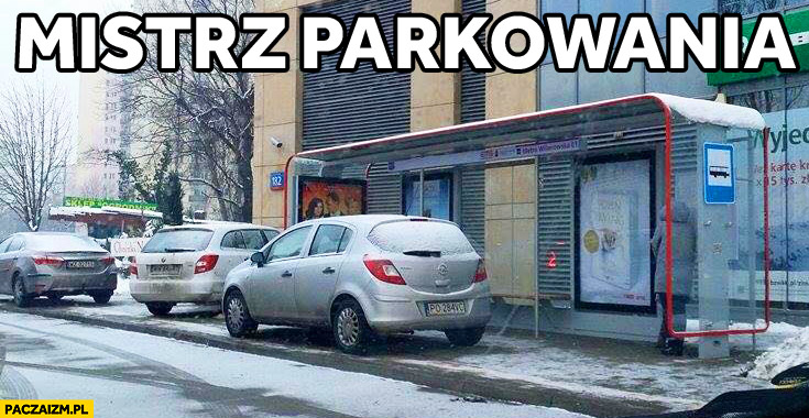 Mistrz parkowania Mordor Domaniewska zaparkował na przystanku autobusowym
