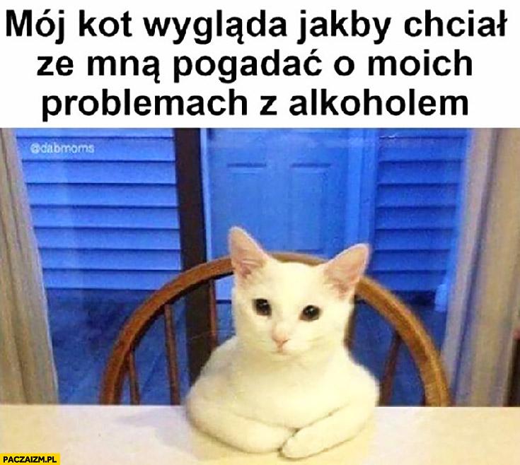Mój kot wygląda jakby chciał ze mną pogadać o moich problemach z alkoholem siedzi przy stole