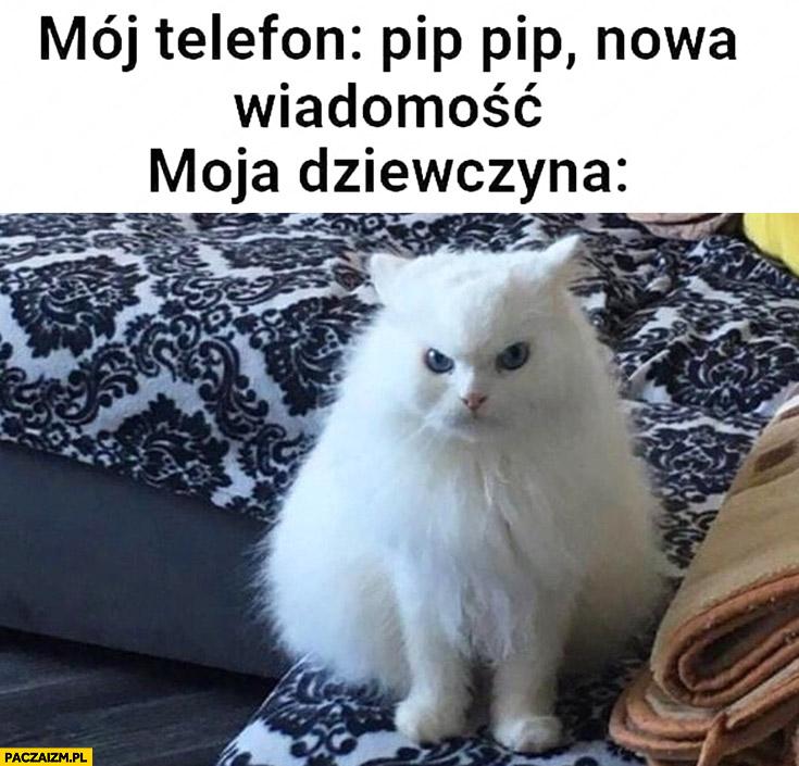 Mój telefon: nowa wiadomość, moja dziewczyna: zła kot kotek
