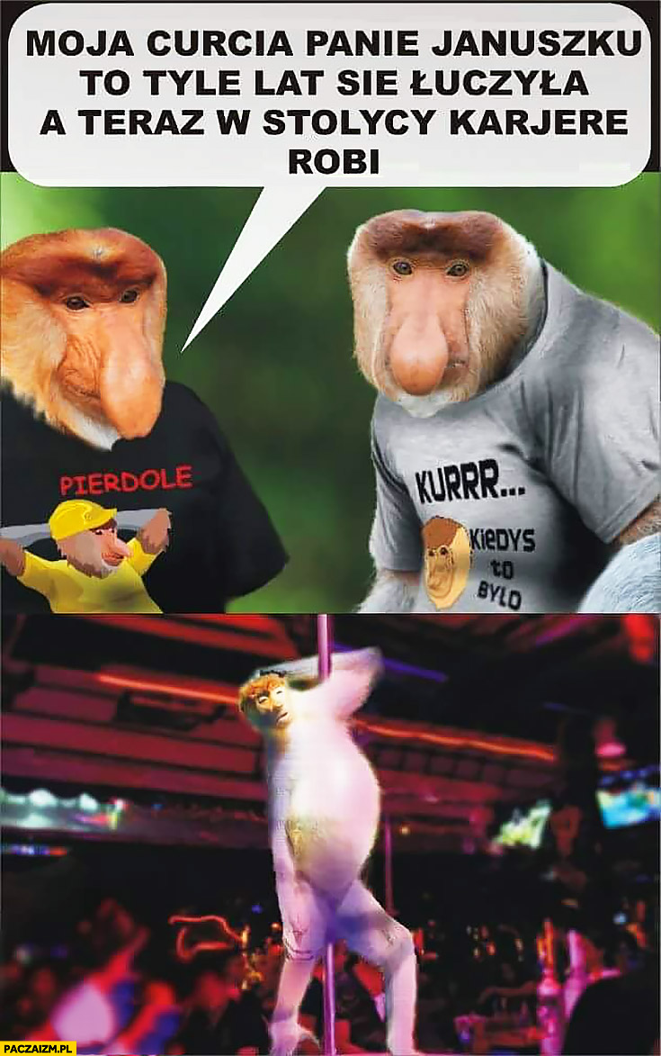 Moja córka panie Januszku tyle lat się uczyła a teraz robi karierę w stolicy w nocnym klubie typowy Polak nosacz małpa