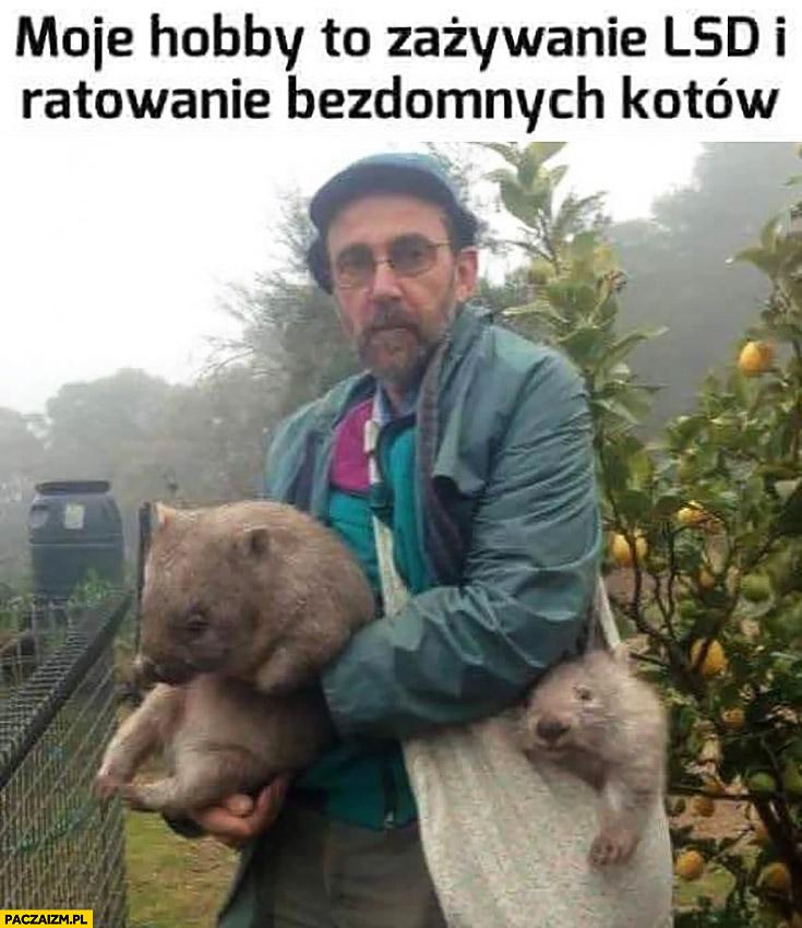 Moje hobby to zażywanie LSD i ratowanie bezdomnych kotów facet z wombatami