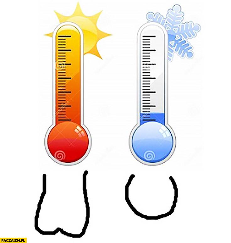 Moszna jaja jajka a temperatura ciepło zimno porównanie