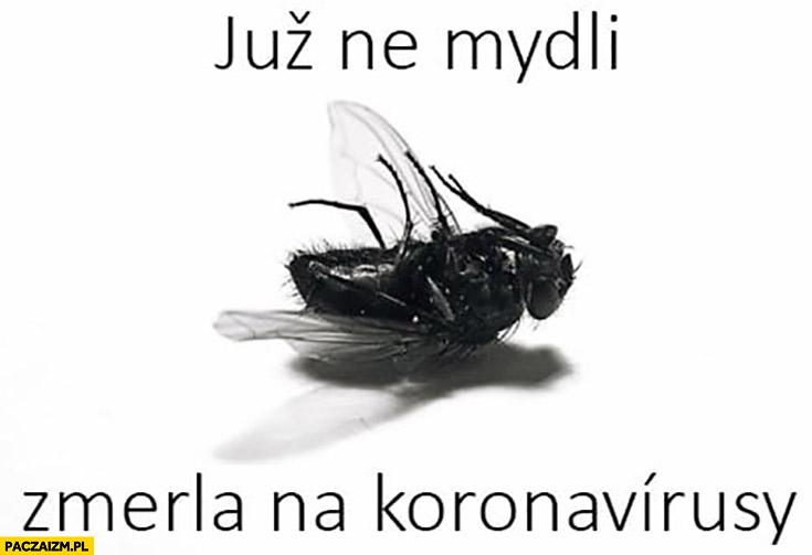 Mucha już nie mydli, zmarła umarła na korona wirusa