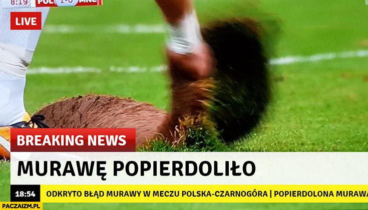 Murawę popierdzieliło breaking news mecz Polska Czarnogóra