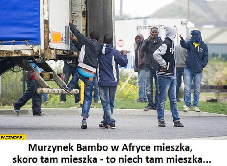 Murzynek Bambo w Afryce mieszka skoro tam mieszka to niech tam mieszka