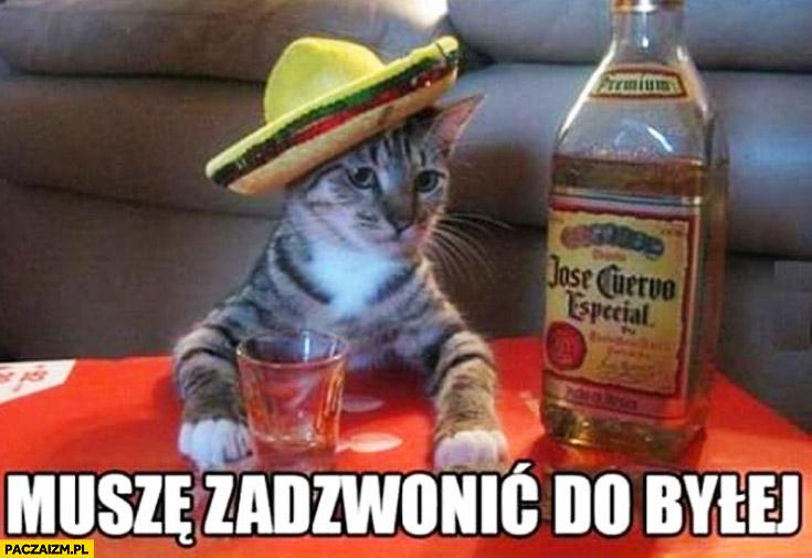 Muszę zadzwonić do byłej kot pije tequila