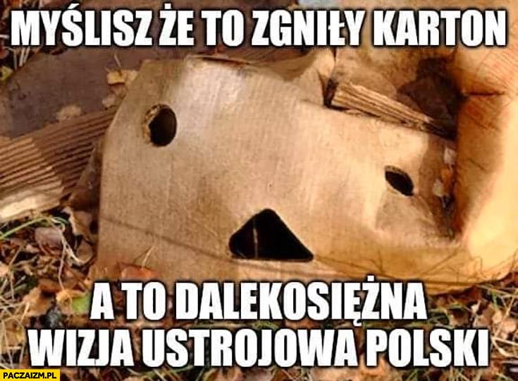 Myślisz, że to zgniły karton a to dalekosiężna wizja ustrojowa Polski