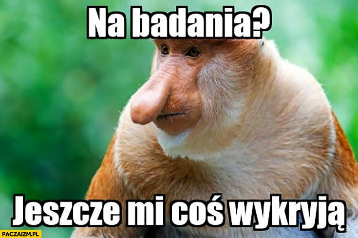 Na badania? Jeszcze coś mi wykryją typowy Polak nosacz małpa