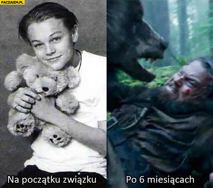 Na początku związku, po 6 miesiącach porównanie Leonardo DiCaprio mis niedźwiedź Revenant Zjawa
