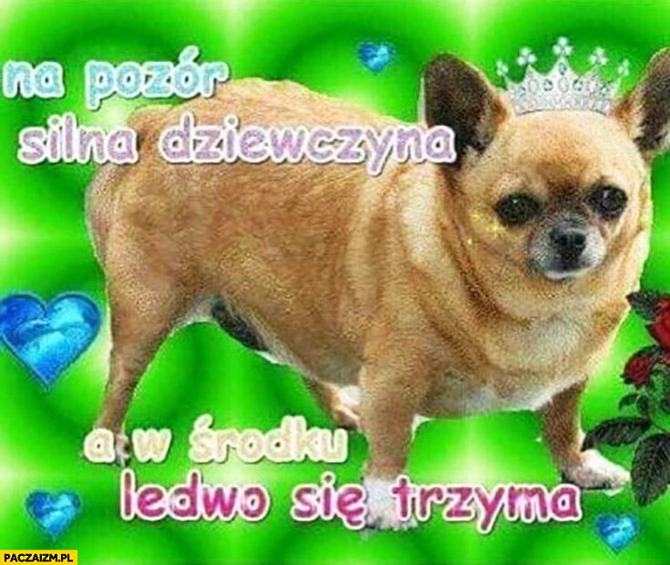 Na pozór silna dziewczyna a w środku ledwo się trzyma pies mops