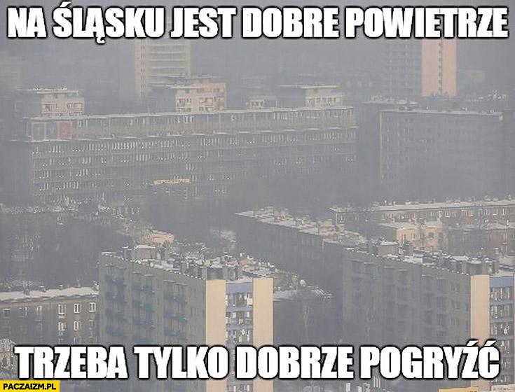 Na Śląsku jest dobre powietrze trzeba tylko dobrze pogryźć smog