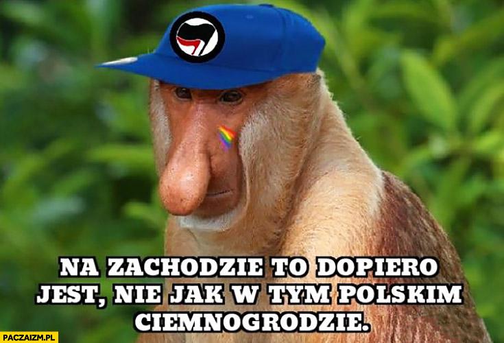 Na zachodzie to dopiero jest nie jak w tym polskim ciemnogrodzie typowy Polak nosacz małpa