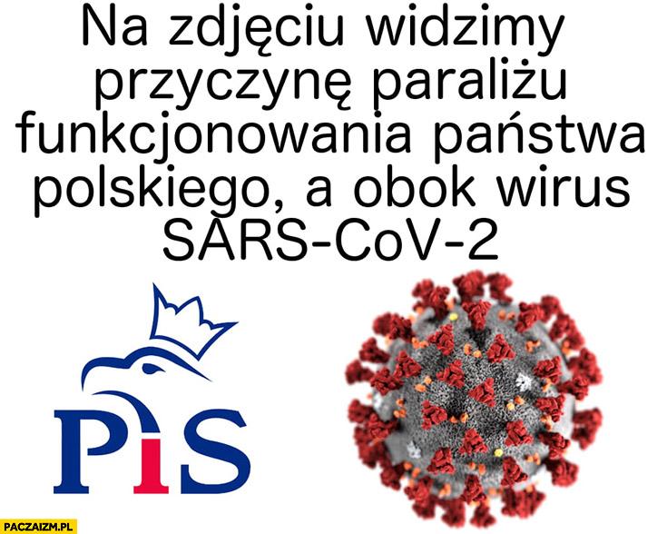 Na zdjęciu widzimy przyczynę paraliżu funkcjonowania państwa polskiego, a obok wirus Sars-CoV-2 koronawirus PiS Prawo i Sprawiedliwość