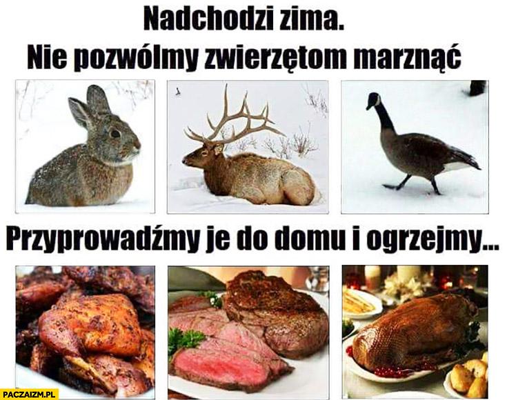 Nadchodzi zima nie pozwólmy zwierzętom marznąć, przyprowadźmy je do domu i ogrzejmy mięso jedzenie